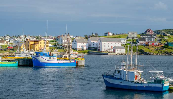 Fishing boats in Newfoundland, Canada - iStock.com\/valleyboi63